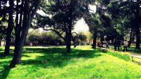 Парк Фенербахче | Fenerbahçe Parkı