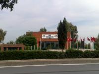 MEF International 1.png