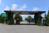 Tema Vehbi Koç Doğa Kültür Merkezi Parkı
