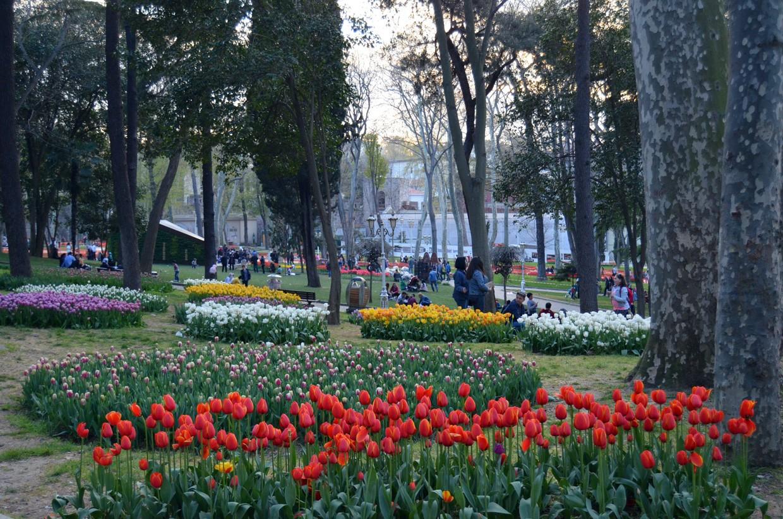 Парк Гюлбхане в Стамбуле