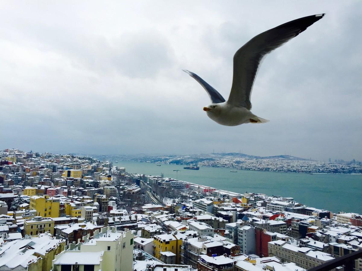 Стамбул зимой у моря